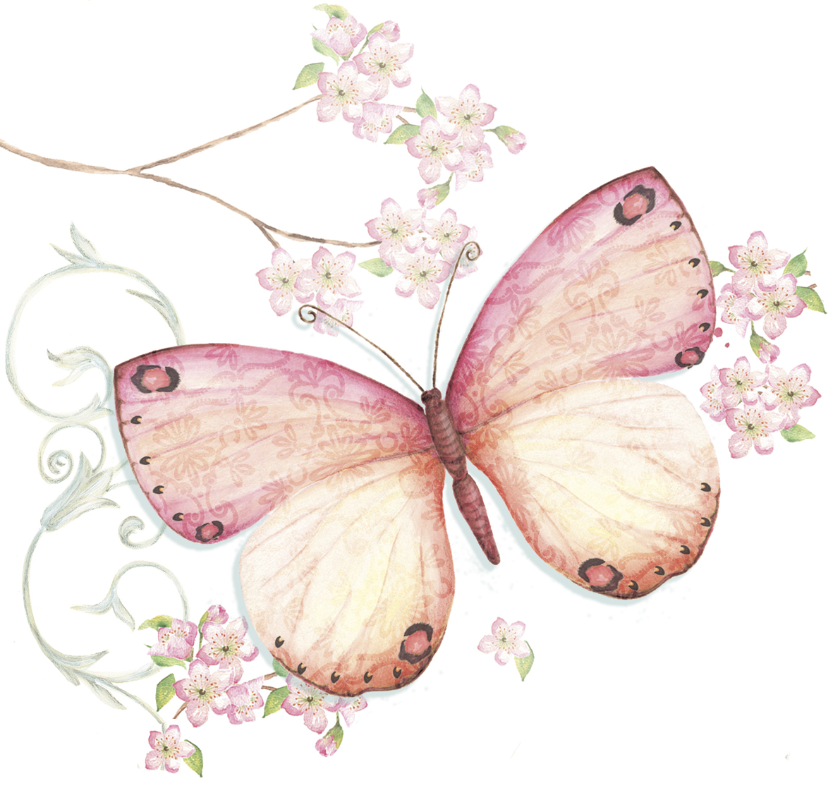 WS361_butterfly_and_blossom