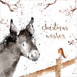 little donkey christmas cards