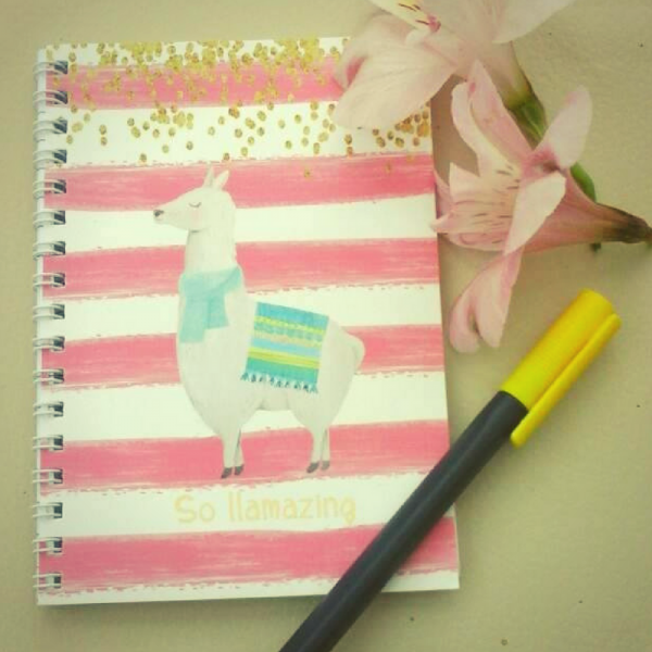 so llamazing notebook