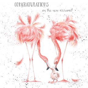 Flamingo New Arrival